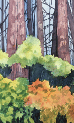 natures charm watercolor painting gallery